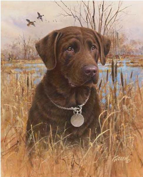 Labrador Retriever Gifts- Chocolate Lab Art Prints ...